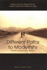 Different Paths to Modernity