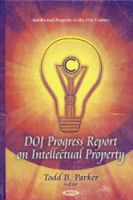 DOJ Progress Report on Intellectual Property