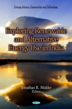 Exploring Renewable & Alternative Energy Use in India