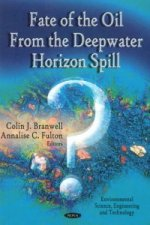 Fate of the Oil from the Deepwater Horizon Spill