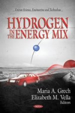Hydrogen in the Energy Mix