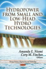 Hydropower from Small & Low-Head Hydro Technologies