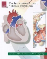 Illustrated Atlas of Human Physiology