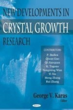 New Developments in Crystal Growth