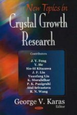 New Topics in Crystal Growth Research