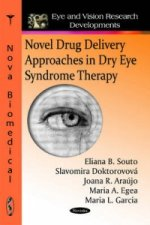 Novel Drug Delivery Approaches in Dry Eye Syndrome Therapy