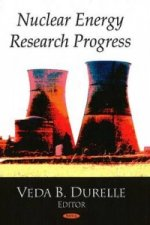 Nuclear Energy Research Progress