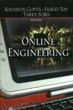 Online Engineering