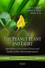 Peanut Plant and Light