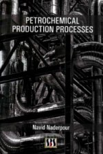 Petrochemical Production Processes