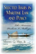 Selected Issues in Maritime Law & Policy