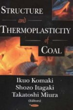 Structure and Thermoplasticity of Coal