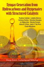 Syngas Generation from Hydrocarbons & Oxygenates with Structured Catalysts