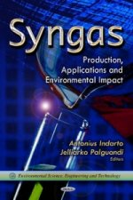 Syngas