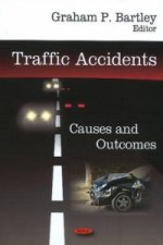Traffic Accidents