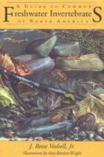 Guide to Common Freshwater Invertebrates of North America