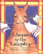Llamas in the Laundry
