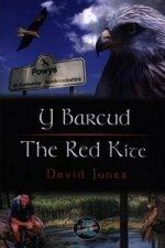 Y Barcud / the Red Kite
