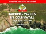 Boot Up Mining Walks in Cornwall & West Devon