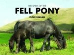 Spirit of the Fell Pony