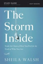 Storm Inside Study Guide