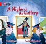 Collins Big Cat - A Night at the Gallery