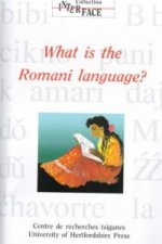 What is the Romani Language?