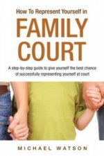 How To Represent Yourself in Family Court
