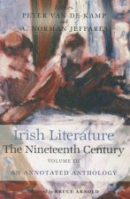 Irish Literature in the Nineteenth Century
