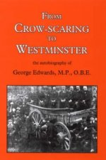 From Crow-scaring to Westminster