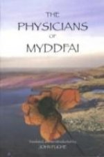 Physicians of Myddfai