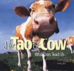 Tao of Cow