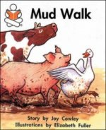 Mud Walk Level H