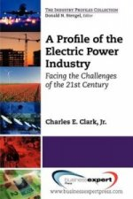 Profile of the Electric Power Industry