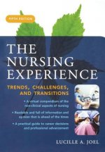 Nursing Experience: Trends, Challenges, and Transitions