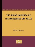 SUGAR HACIENDA OF THE MARQUESES DEL V