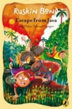 Escape from Java