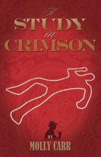 Study in Crimson - the Further Adventures of Mrs. Watson and Mrs. St Clair Co-founders of the Watson Fanshaw Detective Agency - with a Supporting Cast