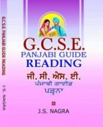 GCSE Panjabi Guide - Reading
