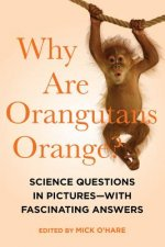Why Are Orangutans Orange? - Science Questions in Pictures - with Fascinating Answers
