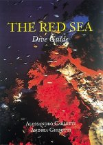 Red Sea Dive Guide
