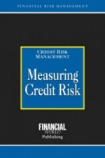 Measuring Credit Risk