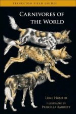 Carnivores of the World