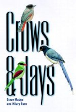 Crows and Jays