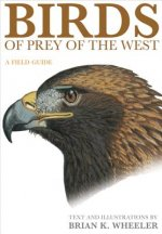 Birds of Prey of the West