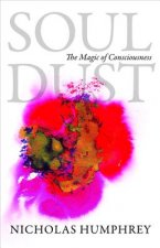 Soul Dust - The Magic of Consciousness
