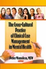 Cross-Cultural Practice of Clinical Case Management in Mental Health