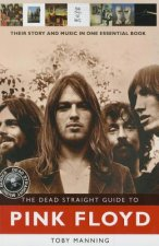 Dead Straight Guide to Pink Floyd