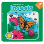 First Look at Insects