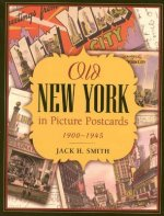 Old New York in Picture Postcards